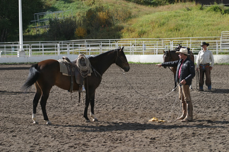 1.My horse's hindquarters are on the circle I want my horse to travel around me.