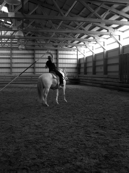 Learning to use the garrocha requires timing, balance, focus, and a clear picture of what you are wanting to accomplish. Necessary maneuvers include straight on a circle, turn on the haunches, leg-yield, half-pass, eventually canter pirouette, and flying lead changes in-line or tempie changes