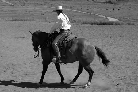 1. Once my horse is backing straight and soft, I will ask her to back a right circle by taking my right leg back slightly, turning my body slightly to the right. My left leg will hang in place. Then I will widen my right hand. (Note the amount of engagement in this photo: Sally's right hind leg is very close to her center of gravity.)
