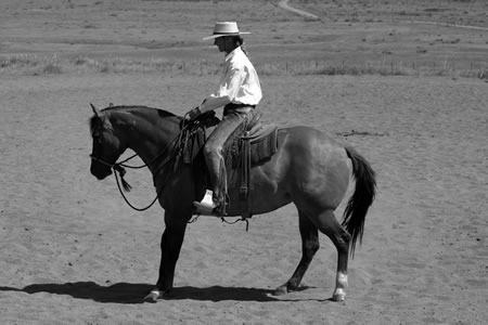 Photo (B.) shows that I'm getting ready to change from left flexion to right flexion. You can see my head is still to the left. I'm still thinking about the left flexion slightly, but I've already started to release her flexion to the left. As I change direction, I straighten my horse, and I straighten my body. I shift my weight to the new outside of the circle. Here I'll shift from my right seatbone, to the center, and then to my left seatbone. I think about my hips being even with her hips and my shoulders being even with her shoulders.