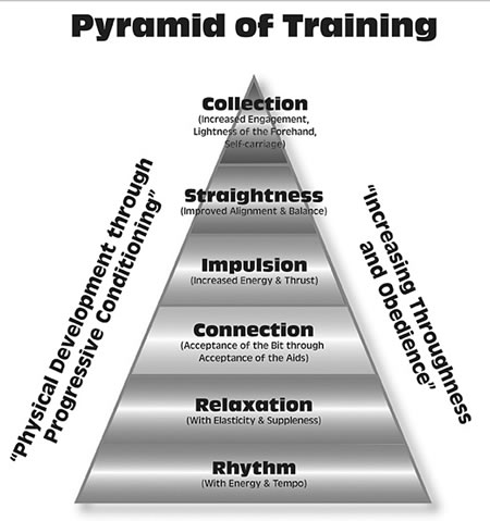 Figure 2: USDF Official Pyramid of Training 2007