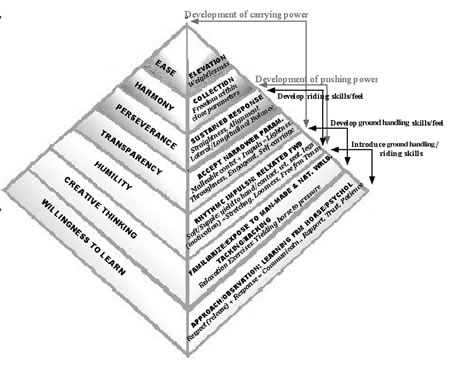 Figure 3: Terry Church's Inclusive Pyramid of Training.
