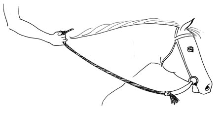 Light contact with mecate and slobber straps. The weight of the rein serves to create the contact with the horse's mouth rather than a direct contact as with an English rein. Because of the weight, the rider can send signals to the horse through the bit by simply taking up the weight of the mecate.