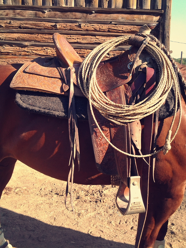 Jay's Saddles with Saddlemaker Ron Butler | Eclectic