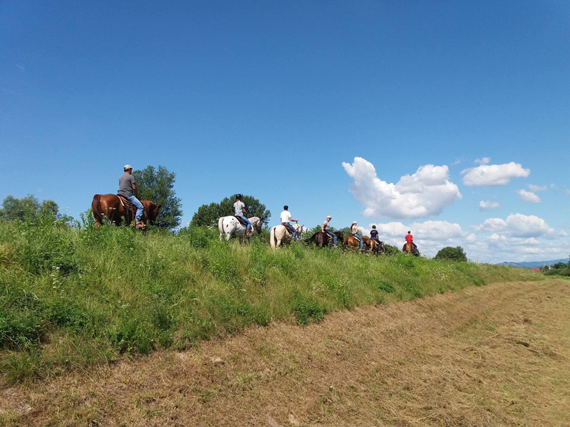 Summer riding photos 2017 eclectic horseman for Dude ranch new hampshire